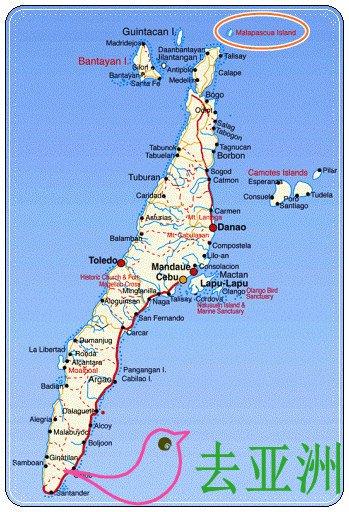 媽媽拍絲瓜島Malapascua Island所在的位置
