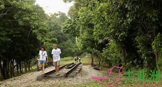 新加坡国家公园局明年底