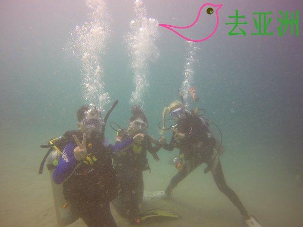 海豚湾(Puerto Galera)潜水考