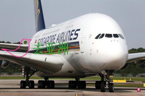 新加坡航空与胜安航空