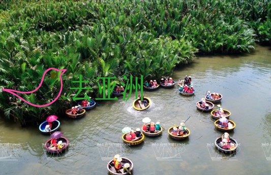 锦青水椰林