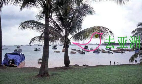新加坡露营地点盘点:一