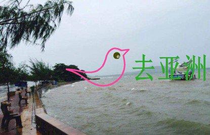 柬埔寨 白马省岸外的菩岛和兔子岛列为海洋保护区