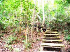 吉隆坡大汉山国家公园