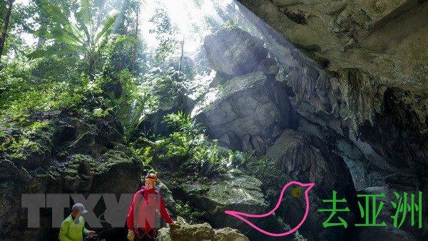 越南广平省,风雅-格邦国家公园发现44个新洞穴,或添新景点