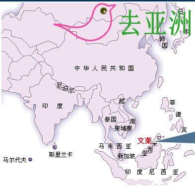 文莱地图,文莱在什么地方,与中国的距离