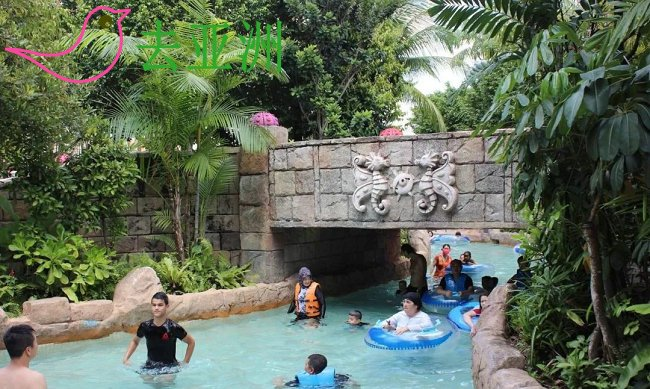 水上探险乐园 Adventure Cove Waterpark