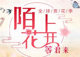 中青遨游网 春季赏花季,欧美立减高至1000元 日