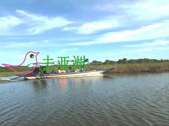 乘船深入鸟栖旅遊区以探索原始的美景