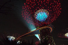 滨海湾花园Gardens by the bay