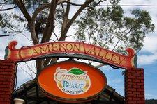 Tanah Rata Cameron Valley茶园