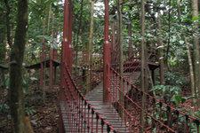咖啡山森林保护公园Bu