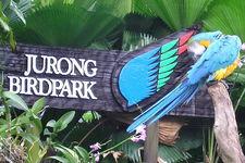 裕廊飞禽公园Jurong Bird Park