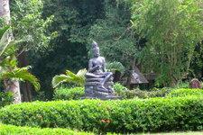 解脱自在园禅修Meditati