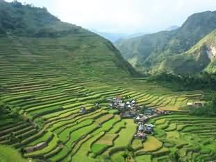 Batad Top View Point Homestay and Re
